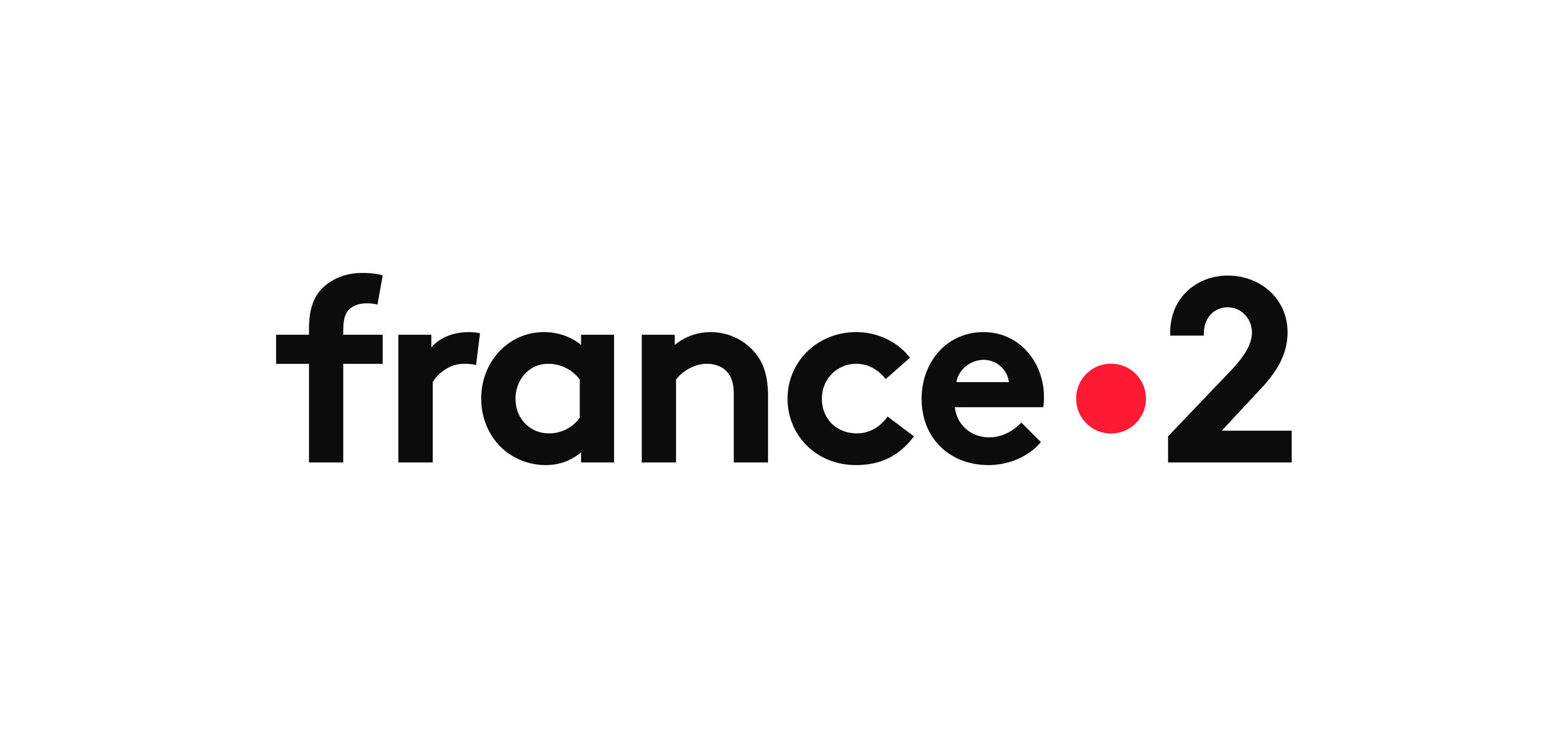france_2_logo_cmjn_france_couleur_noir-